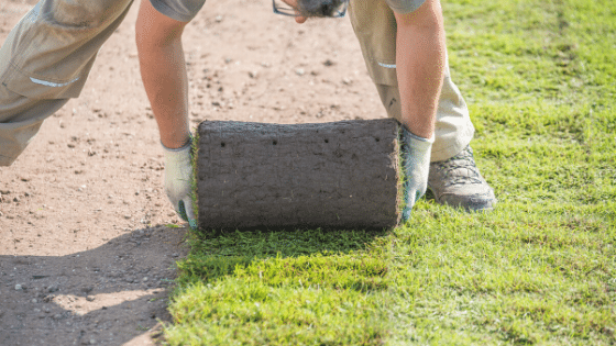 How Late Is Too Late To Lay Sod? - Monarch Sod