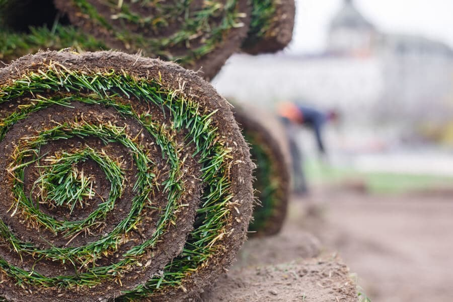 Utah SOD Delivery Curbside Service