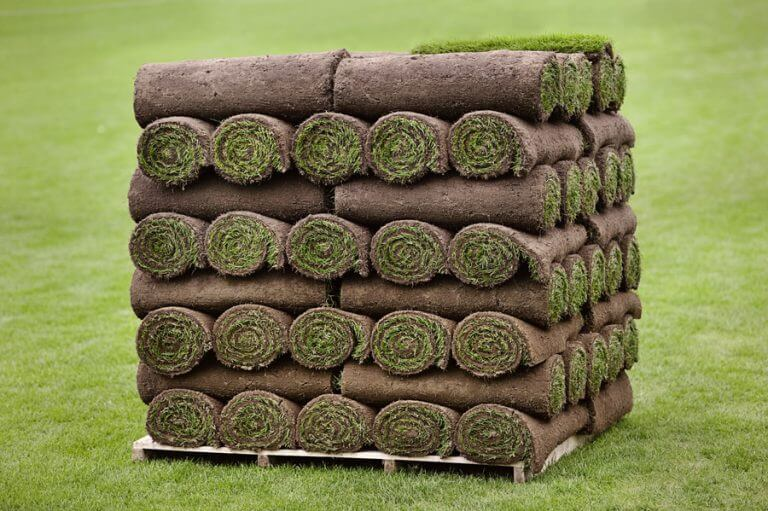 Utah SOD Delivery Special Requests