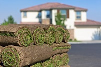 Utah SOD for Residential Installation