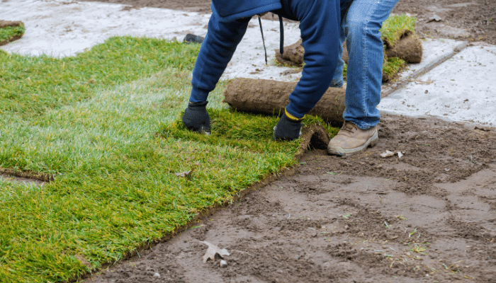 Five Key Steps to Laying Sod in Utah