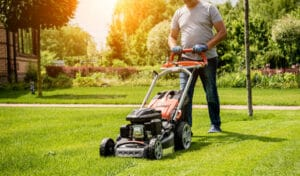Top 5 Lawn Care Tips For Beginners