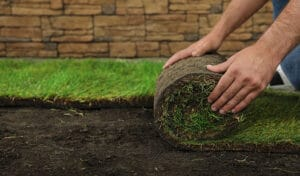 What is the Process of Sod Installation?