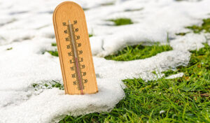 Growing Sod in Cold Weather | Monarch Sod