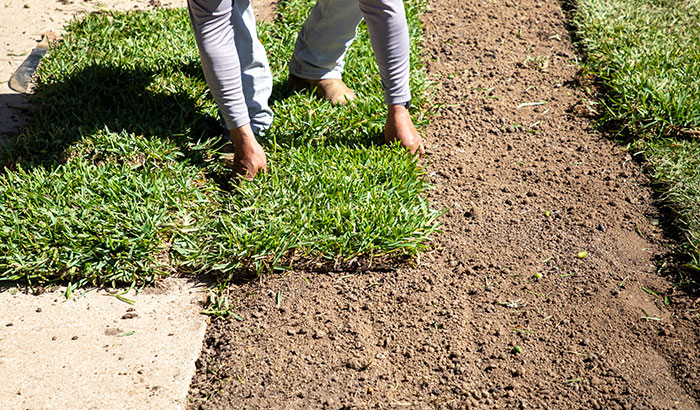 Can I Install Sod Over Rocky Soil?